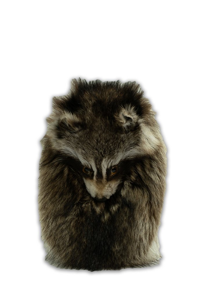 Raccoon Mask Sporran