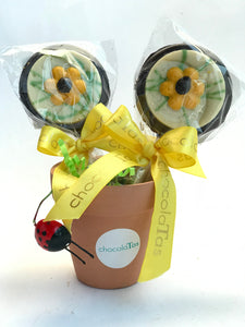Lolly - Flower Pot with Dark Chocolate