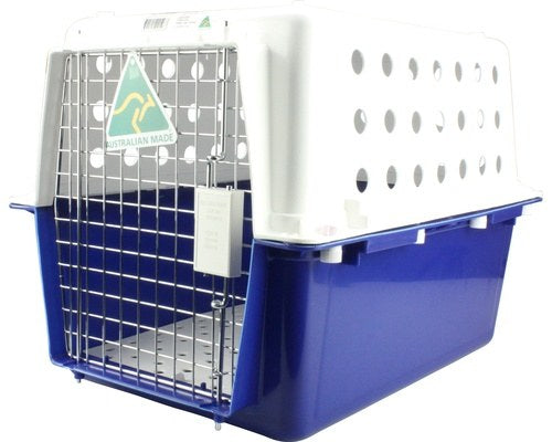 Cat Carrier for Cuddleton British Shorthair