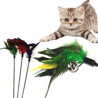 Jingle Bell Feather Cat Teaser Toy - Great fun for interactive play with your cat or kitten