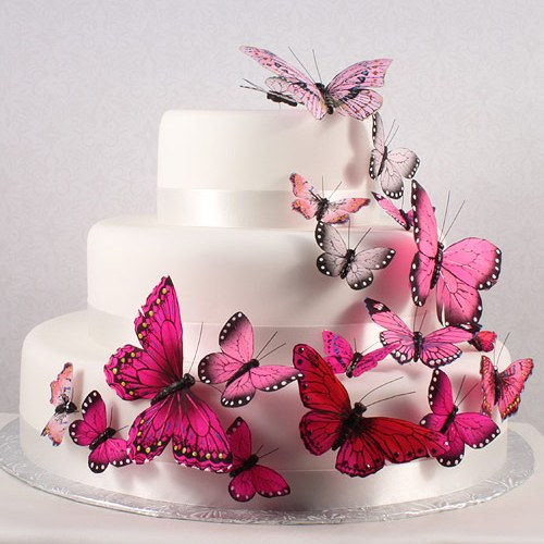 Hand Painted Butterfly (24) - Wedding Wonders