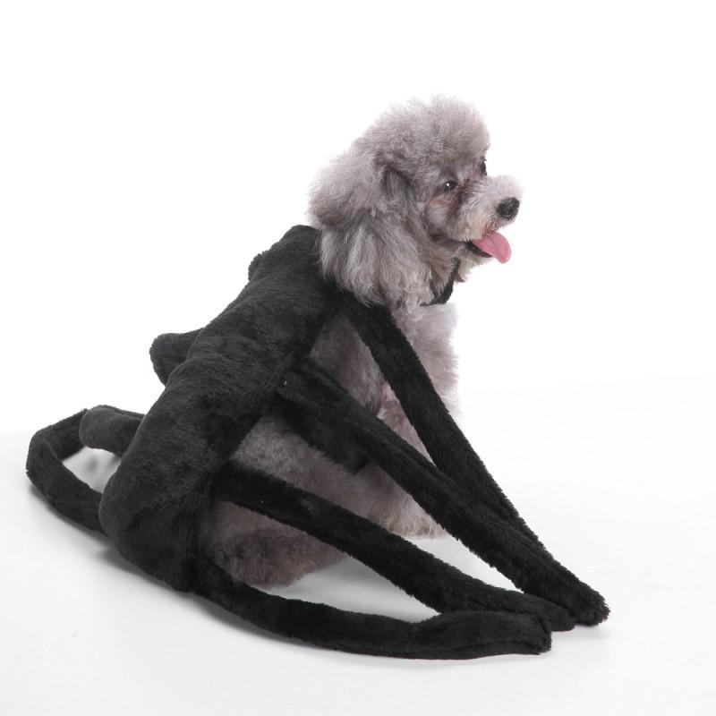 Cute Halloween Dog Costume