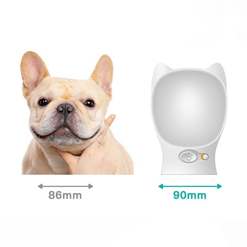 Portable Pet Dog Water Dispenser Feeder For Small Large Dogs