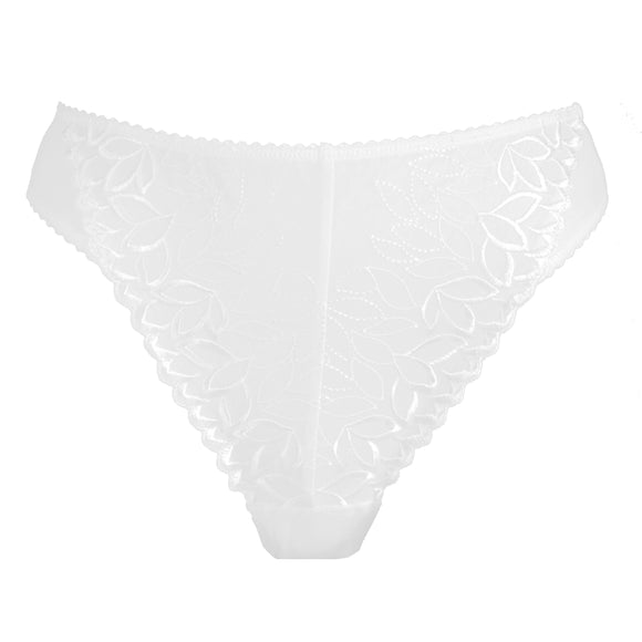 2303 Cotton Fresco Brief