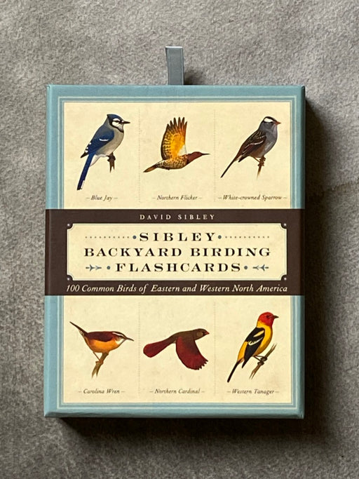 "Sibley's ""Backyard Birding"" Flashcards"