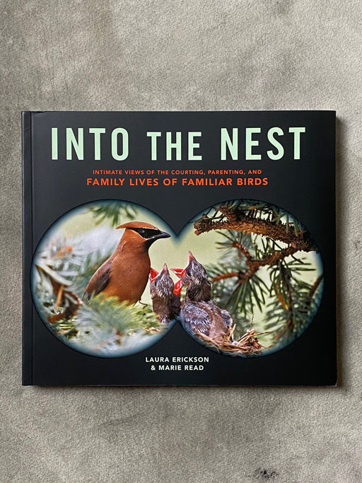 """Into The Nest"" by Laura Erickson and Marie Read"