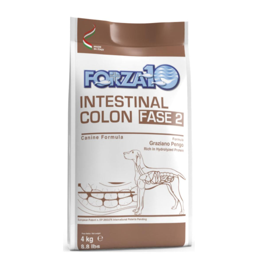 Intestinal Colon (Colitis) Active 2. fāze suņiem