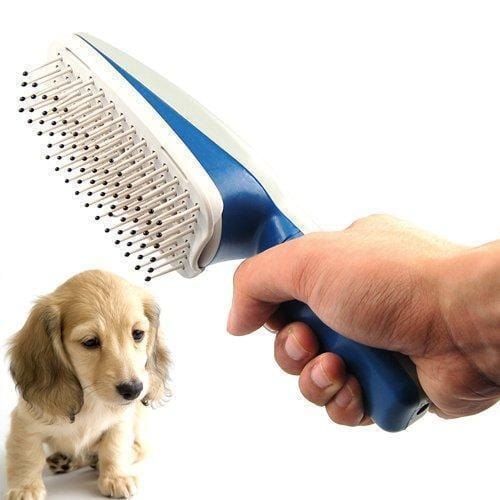 Ionic Pet Groom