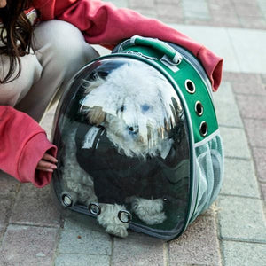Space Aat Pet Bag