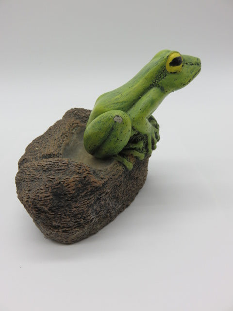 <span style='font-size:1em'>Cement</span><br><span style='font-size:0.7em'>Frog on a rock</span>