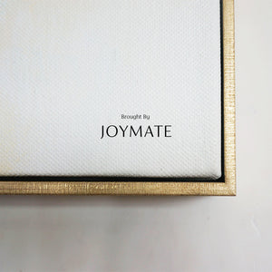 Orange Glance │ JOYMATE