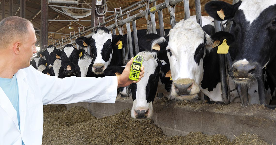 The Importance of Preventing Heat Stress in Livestock with Kestrel Weather Meters