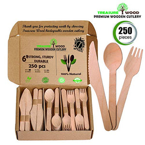 15 Greatest Compostable Utensils