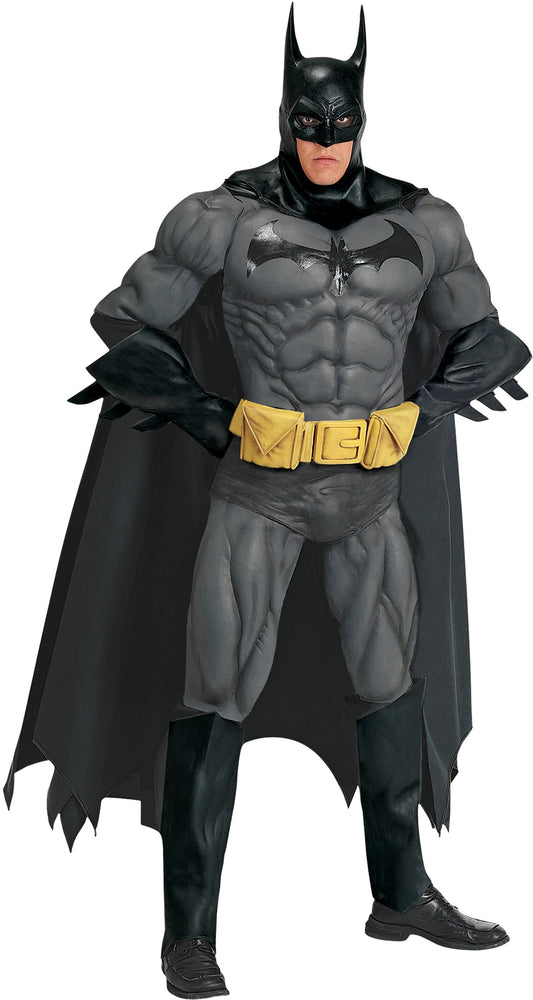 Batman Collector Costume