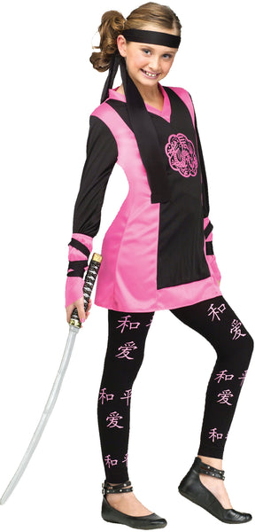 Dragon Ninja Girl Costume