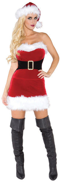 Mistress Claus Costume