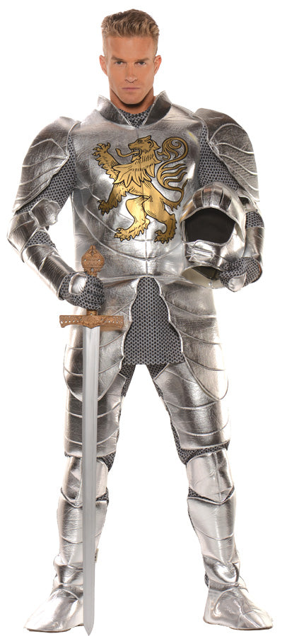 Knight In Shining Armour Costume