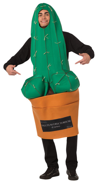 Happy Cactus Costume