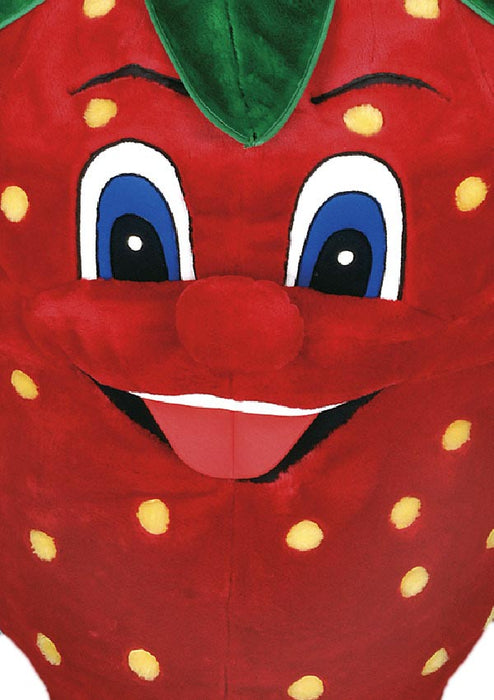 Strawberry Costume Mascot