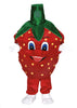 153C Strawberry Costume Mascot