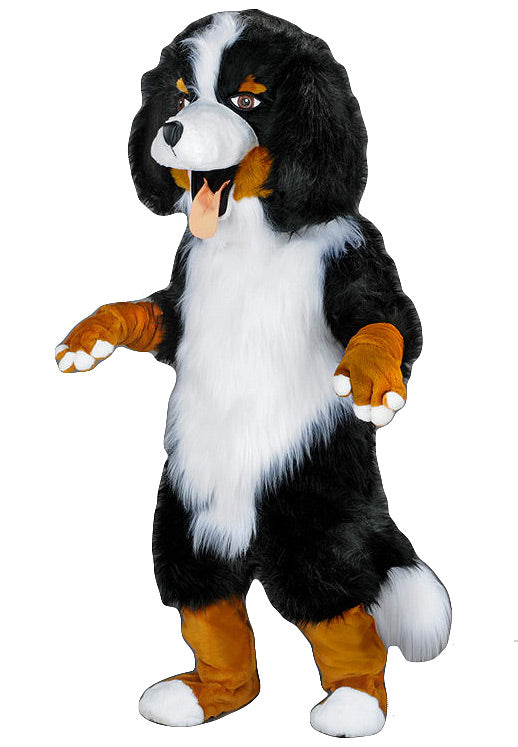 213B Bernese Mountain Dog Mascot
