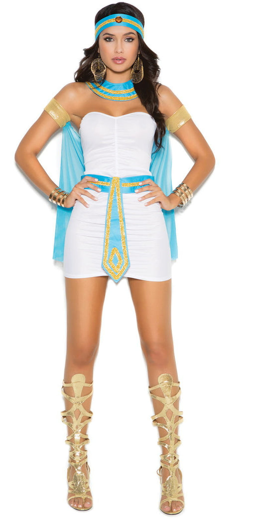 9138 Queen of the Nile Costume