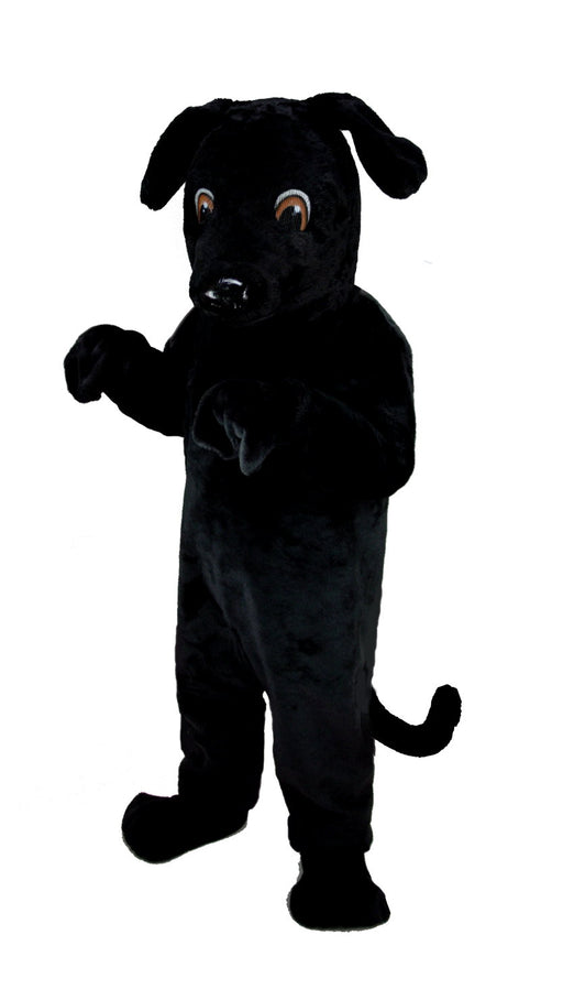 T0091 Black Lab Mascot Costume (Thermolite)