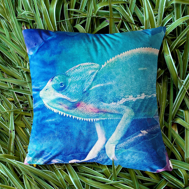 Curious Chameleon Explorer Cushion Cover