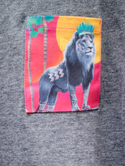 Kids Grey T with Stand Tall Simba Pocket