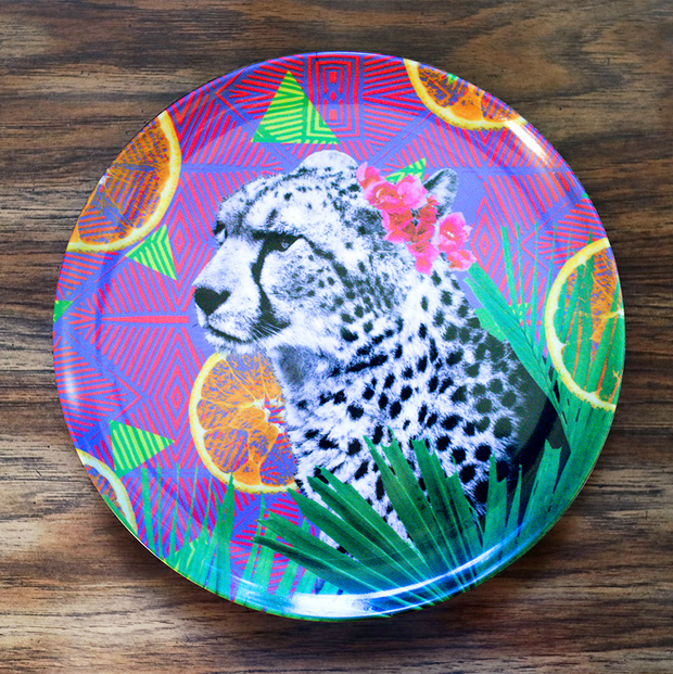 Citrus Cheetah Adventure Plate