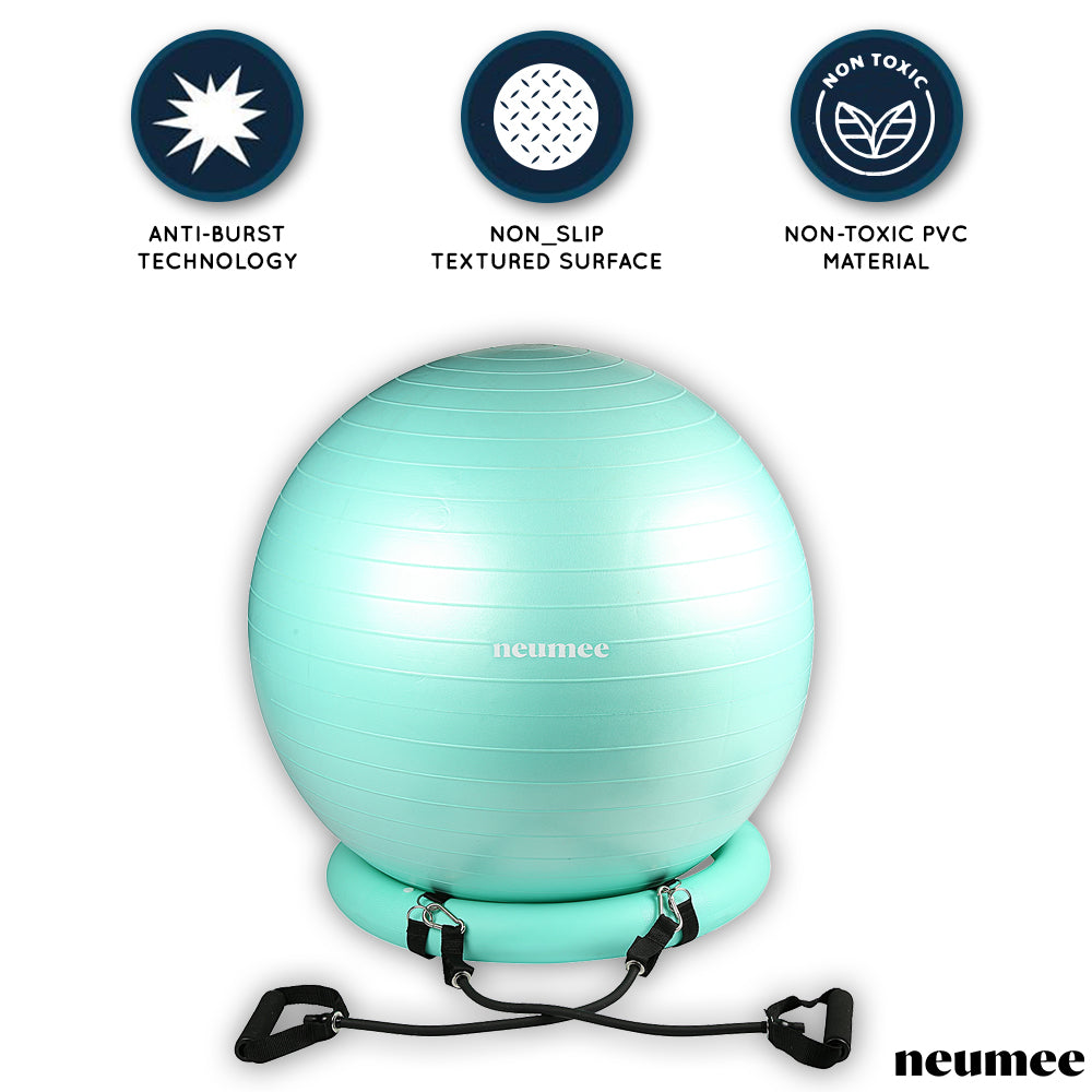 Neumee Multi-functional Exercise Ball
