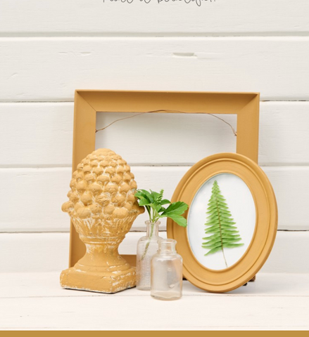 Pictured is a collection of decorations painted with Mustard Fusion Mineral Paint. One is a floral statue, another is a picture frame with a pressed fern inside it, and the last is a large empty picture from behind the other objects. In the center are two glass jars, one containing a cutting from a plant.