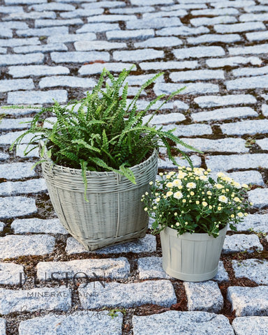 Pictured are two baskets painted with Lichen Fusion Mineral Paint. Each basket is being used as a pot for a plant. One basket holds a fern and the other basket holds yellow flowers. The baskets sit on cobblestones.
