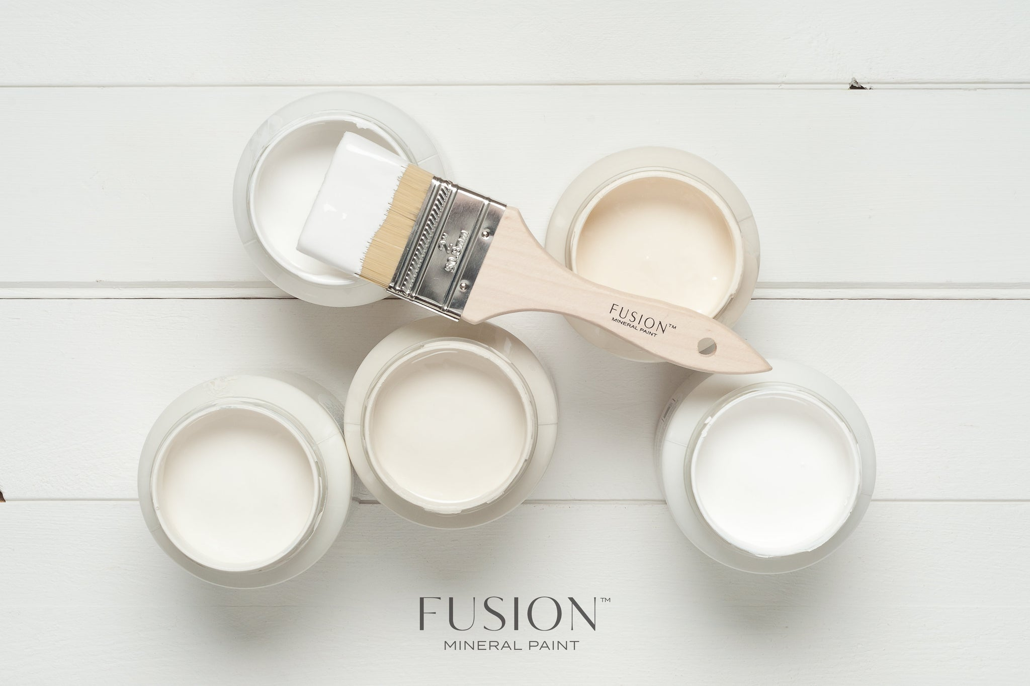 Fusion™ Mineral Paint 101 Workshop (January 11)