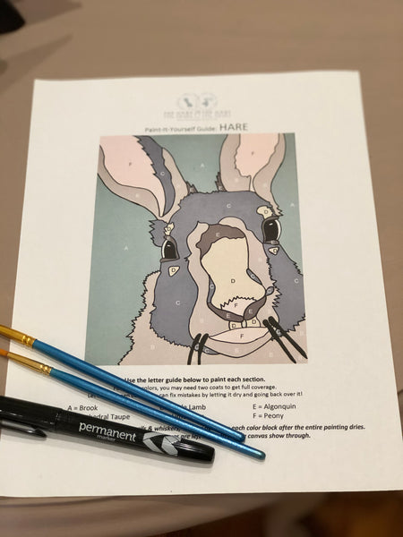 Pictured is the color guide for the hare Paint-It-Yourself Kit with two paintbrushes and a black permanent marker.