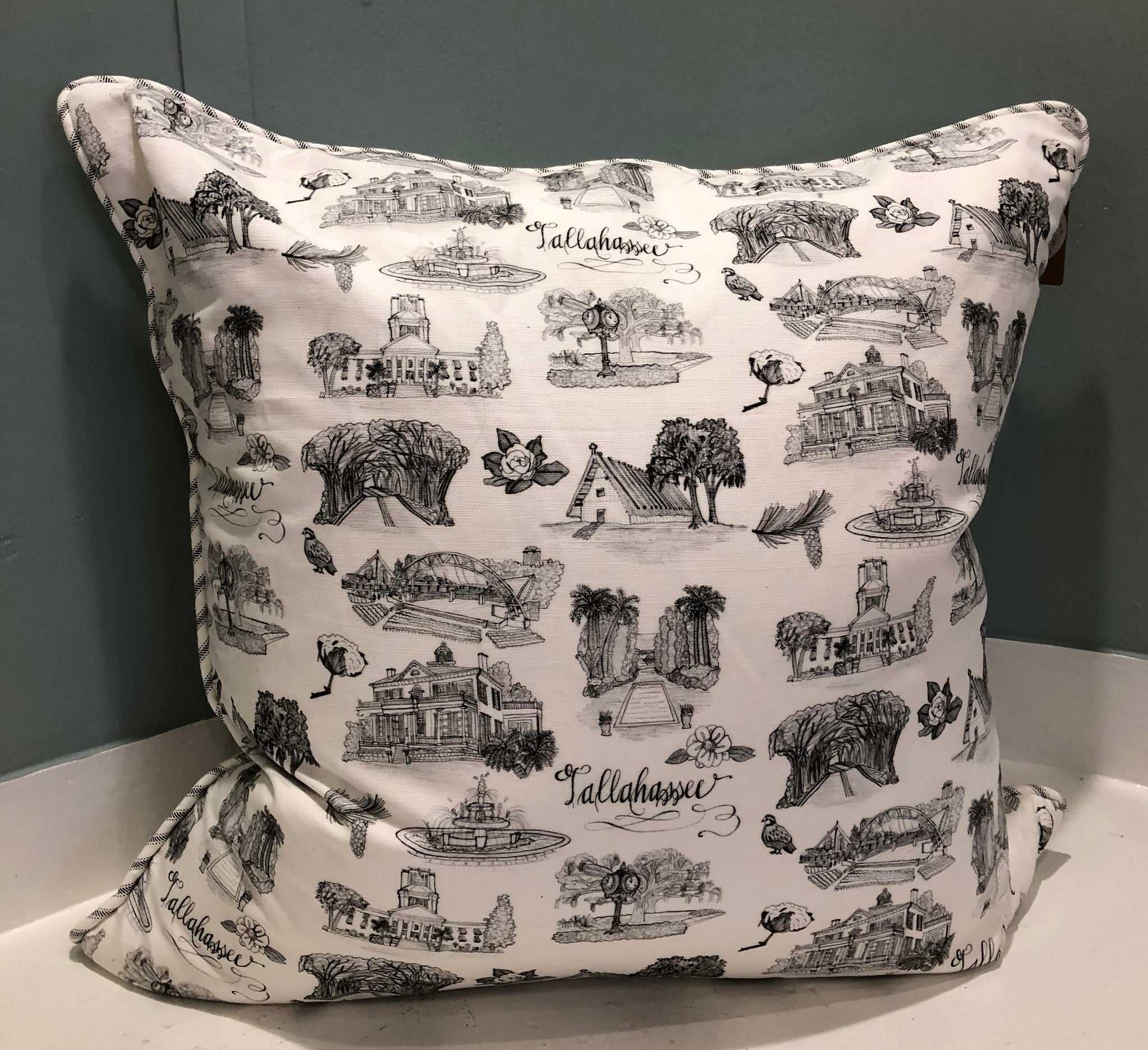 Toile of Tallahassee© Pillow Cover - 20x20