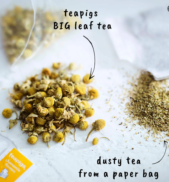 "There are chamomile leaves and flowers gathered on a surface. There's an arrow pointing toward them with the words ""teapigs BIG leaf tea."" There is a pile of ground tea leaves with an arrow pointed toward them that says ""dusty tea from a paper bag."""