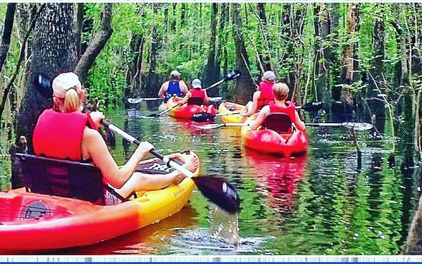 Waccamaw River Kayak Tour