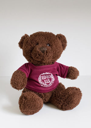 Harvard Teddy Bear Chocolate