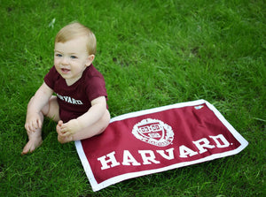 Official Harvard Rectangular Pennant