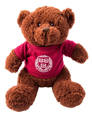 Harvard Teddy Bear