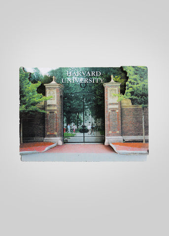 Harvard 3D University Magnet