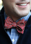 Official Harvard Vineyard Vines Bow Tie