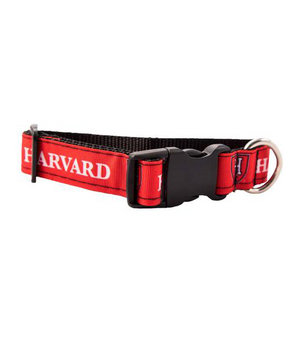 Harvard Shield Dog Collar