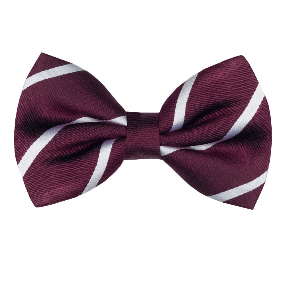 Harvard Silk Striped Bow Tie