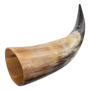 Medieval Animal Drinking Horn (Real Animal Horn)