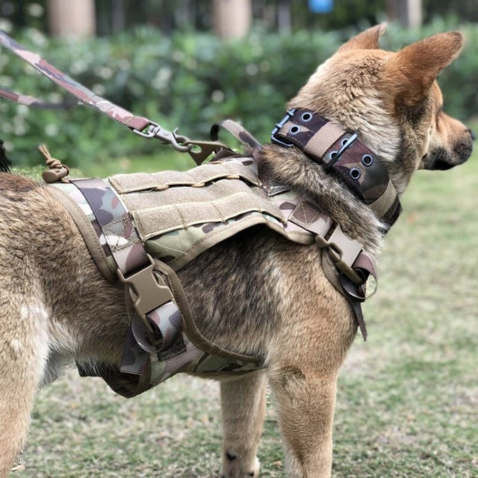 1000D nylon tactical dog training vest waterproof outdoor dog vest outdoor camouflage tactical dog vest 1