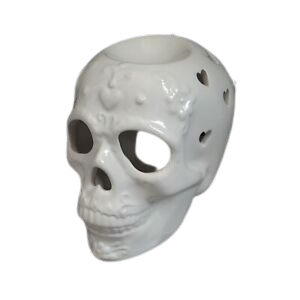 Skull Candy Plug In Wax Melt Burner