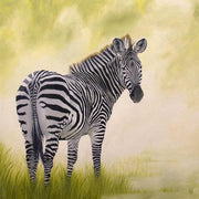 Zebra Painting African Beauty Image