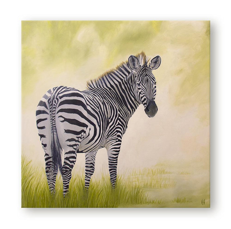 Zebra Painting African Beauty Canvas Print on Wall